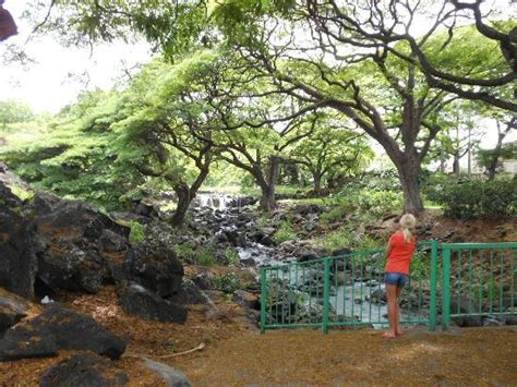 Liliuokalani Botanical Garden by Lili Uokalani Botanical Garden Waterfall Picture Of