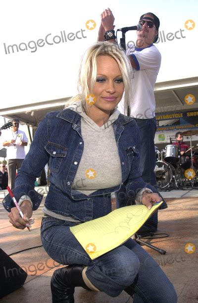 kid rock fan page pamela anderson pictures and photos