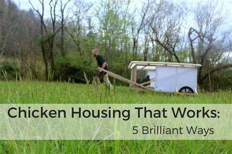 Free Downloadable House Plans by Chicken Coops That Work 5 Brilliant Ways Abundant