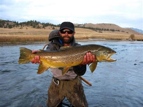 dream boat streaming prime self storage fishing report for colorado blog