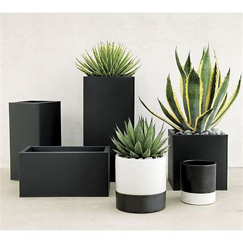 big planter pots 1000 ideas about large outdoor planters on