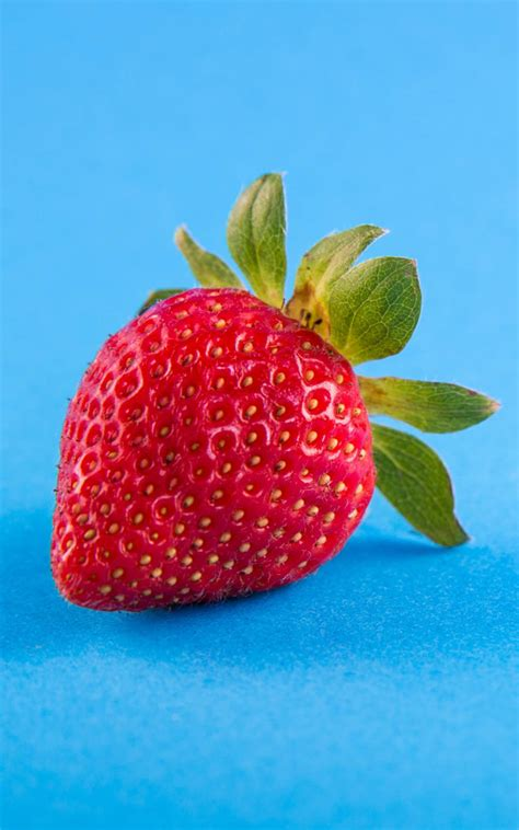 Strawberry Blue strawberry blue background free 4k ultra hd
