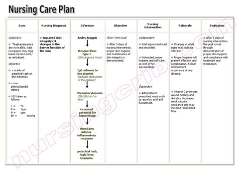 Nursing Care Plan For C Section by Impaired Tissue Integrity