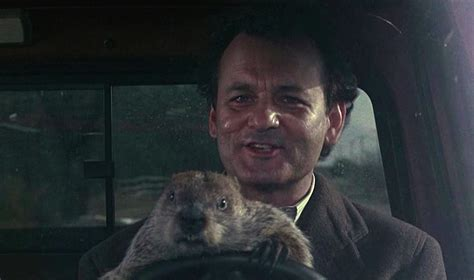 groundhog day jpg nyc weekend truffaut ramis from another