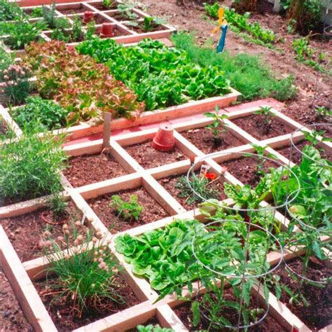 square foot garden layout square foot vegetable garden layout