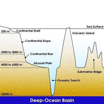 Continental Shelf Slope And Rise by Continental Rise Continental Shelf Continental Slope