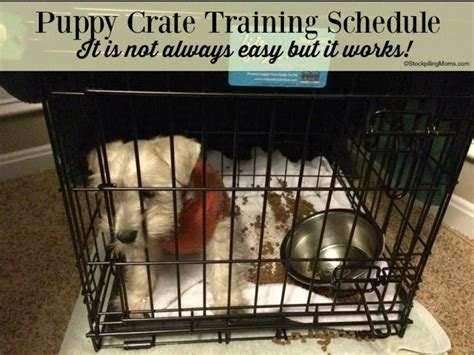crate training puppy crate training schedule that really works i swear