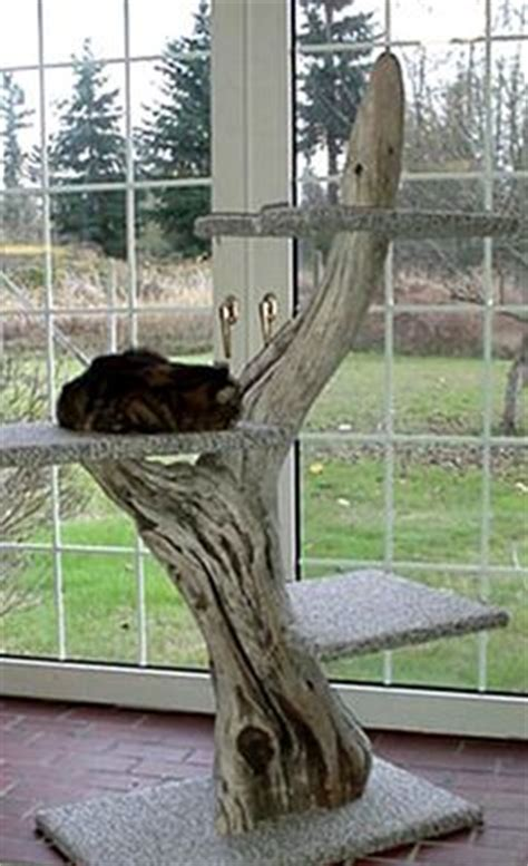 self made tree 1000 images about dig cat trees on