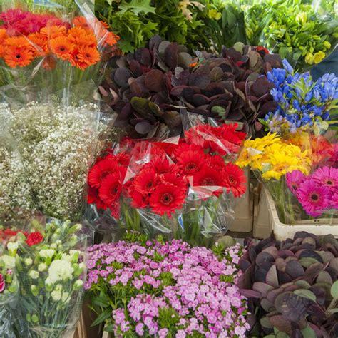 Wholesale Florist by Florists Archives Wholesale Florist