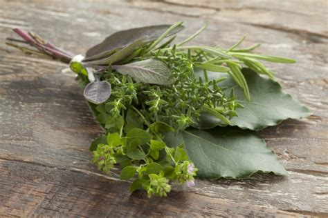 Composition D Un Bouquet Garni by Come Comporre Un Bouquet Garni Agrodolce