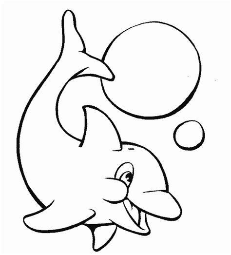 printable animal printable dolphins animal coloring pages