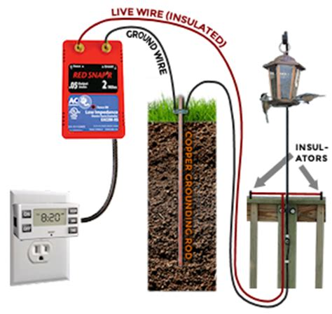 exposed live wire electrified raccoon proof bird feeder netscraps