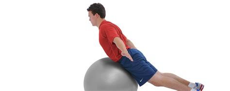 swiss exercise ball  original swissball  theragear