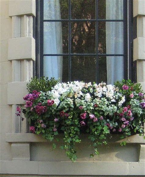 Hanging Window Box Planters by 225 Best Images About Window Boxes On Window