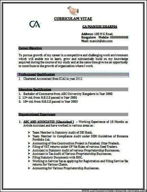 sle resume format for experienced it professionals doc resume sles for experienced professionals doc free