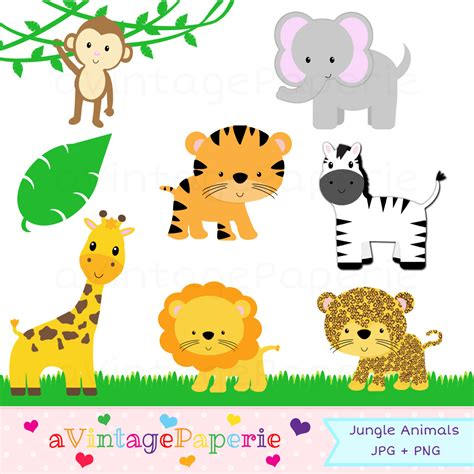 safari animals clip jungle zoo clipart clipground