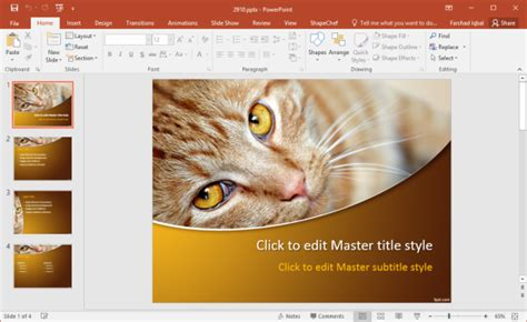cat powerpoint template free pets powerpoint templates