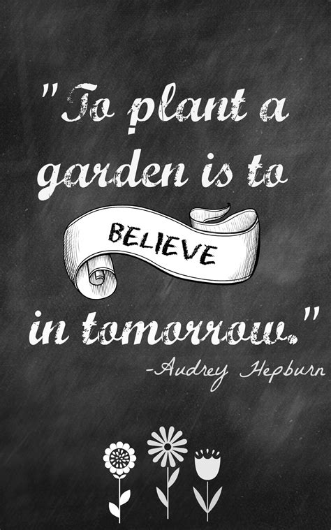 Backyard Quotes by Backyard Quotes Quotesgram