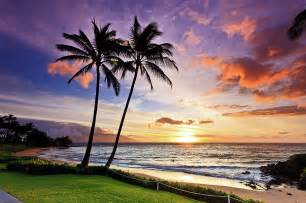 Beach Duvet Beach Sunset With Palm Trees In Maui Hawaii Photograph By