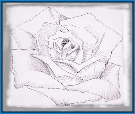 imagenes tiernas en lapiz imagenes de flores en lapiz para enamorados dibujos de