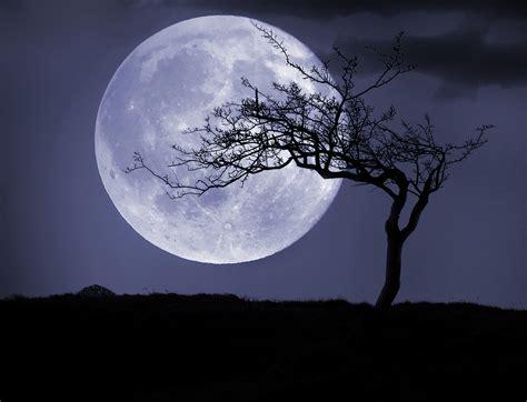 wolf moon rise   full moon