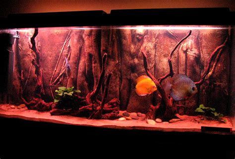 agréable Decor Aquarium Pas Cher #3: aqua22.JPG
