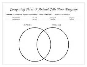 venn diagram animal and plant cells comparing plants and animal cells venn diagram by