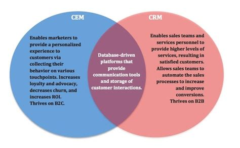 better crm cem vs crm which platform is better kungpao tv