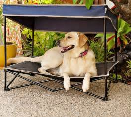 Outdoor Elevated Dog Bed With Canopy by Dog Canopy Bed Portable Outdoor Pet Tent Foldable Puppy