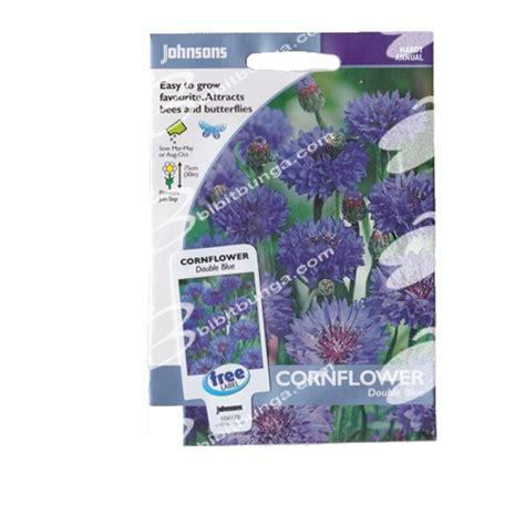 Benih Bunga Mr Fothergills Import Cornflower Blue benih cornflower blue 250 biji johnsons seeds