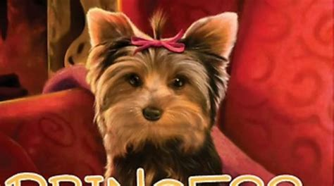puppy princess puppy place princess on vimeo
