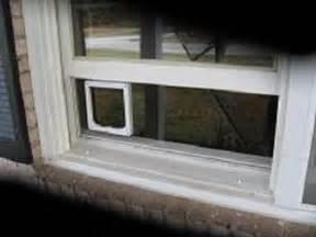 Cat Doors For Windows Decor Clear Window Mounted Cat Door For Sash Windows Catmate Flap Mounted In Plexiglass Slab With An