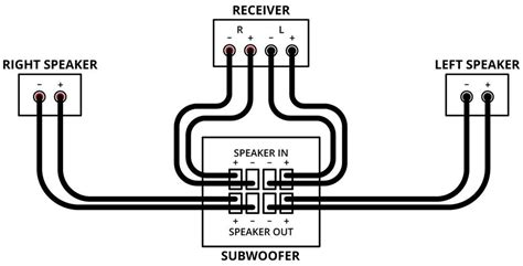 polk audio wiring diagram polk audio subwoofer wiring