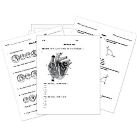 printable organization quiz for students multiple choice bubble sheet maker free printable