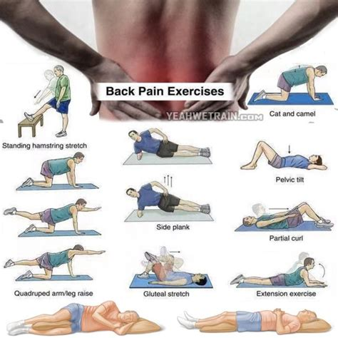25 best ideas about back workout at home on