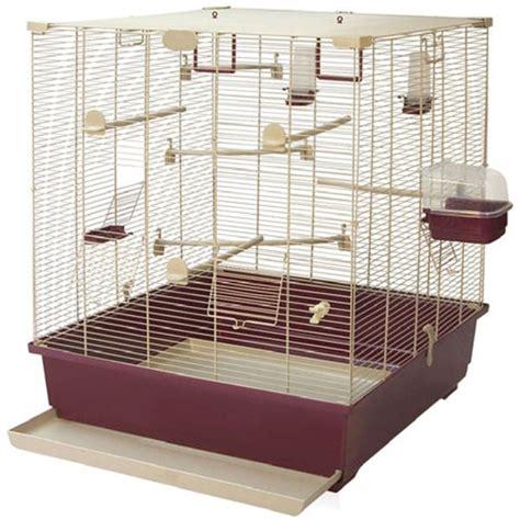 gabbia master gabbia adatta per una coppia