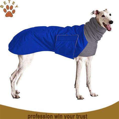 big dogs clothing clothing big dogs buy clothing big dogs clothing big dogs clothing