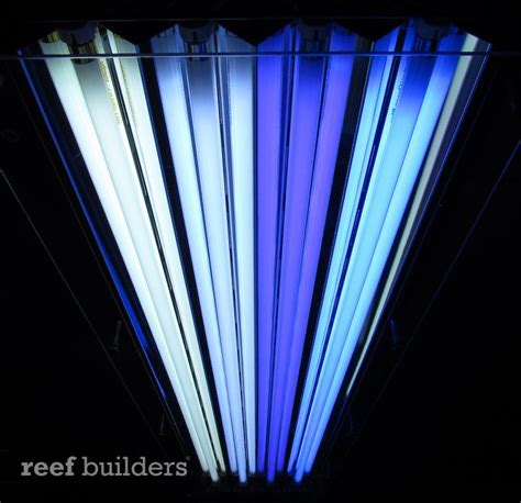 Vho Aquarium Lighting Fixtures Tek Wave Vho T5 Fixture From Sunlight Supply Is Finally Here News Reef Builders The Reef And