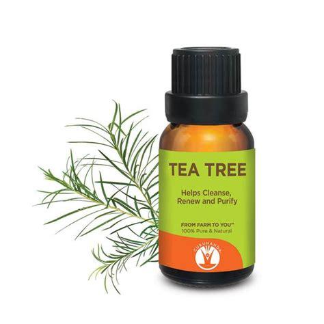 is pure tea tree oli good for ingrowing hairs tea tree essential oil 100 pure tea tree oil gurunanda