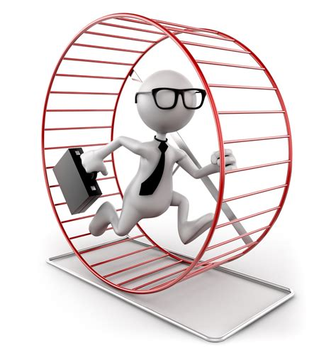 hamster wheel the business hamster wheel employee to business owner