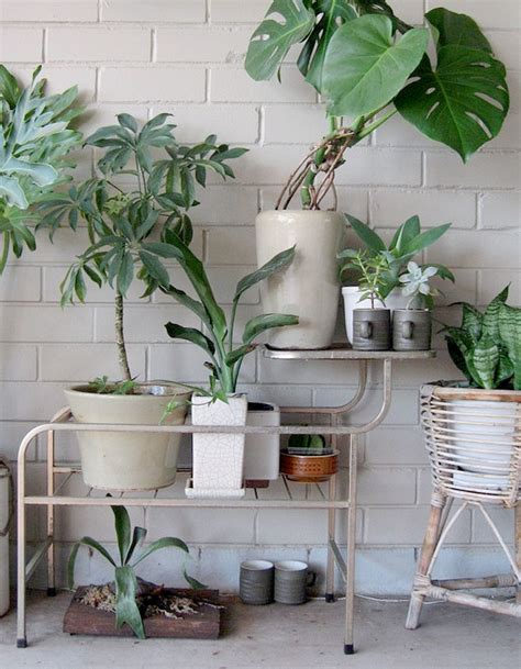 meuble pour plante meuble pour plante meuble pour plantes meuble pour