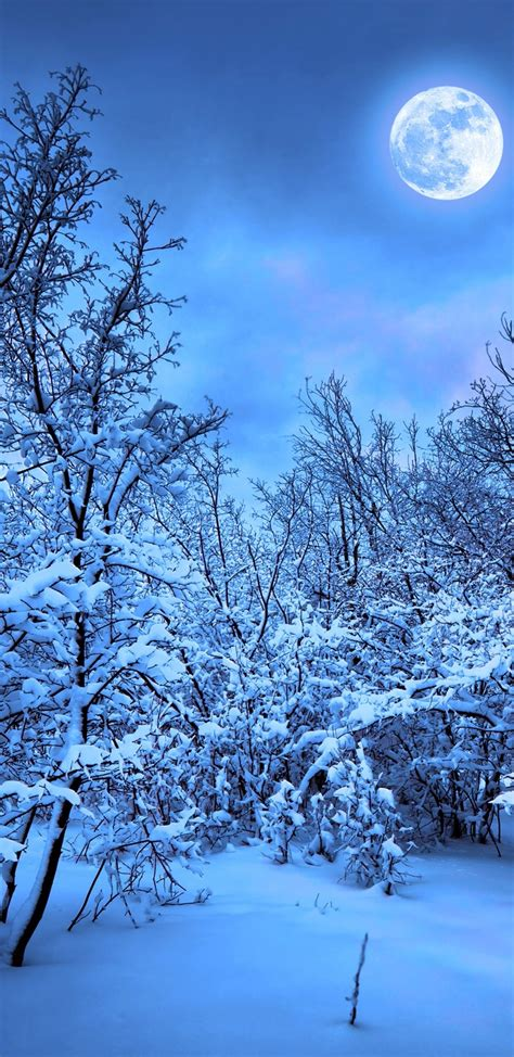 wallpaper 4k for note 8 1440x2960 winter snow nature 4k samsung galaxy s8 s8