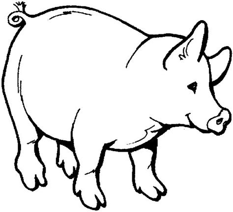 fat pig coloring page fat cute pig printable coloring books