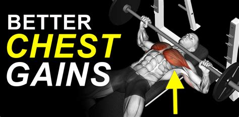 the best way to bench press what is the best way to bench press for a massive chest vince delmonte s muscle