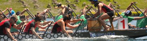 dragon boat racing pickering pdbc junior