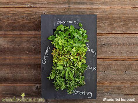 Vertical Garden Wall Kit Vertical Garden Wall Kit With Chalkboard Frame Diy