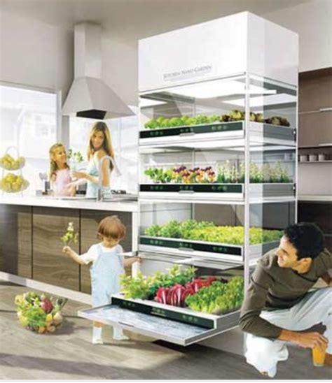 coltivare in casa senza lade il giardino idroponico ikea per coltivare in casa