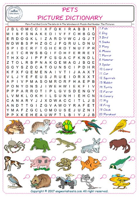 a to z finding a pet for me books pets find and circle the words in the wordsearch puzzle