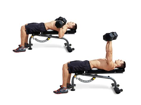 dumbbell bench press without bench the 15 most important exercises for men men s fitness
