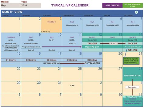 Fertilization Calendar Search Results For Implantation Calendar Calendar 2015